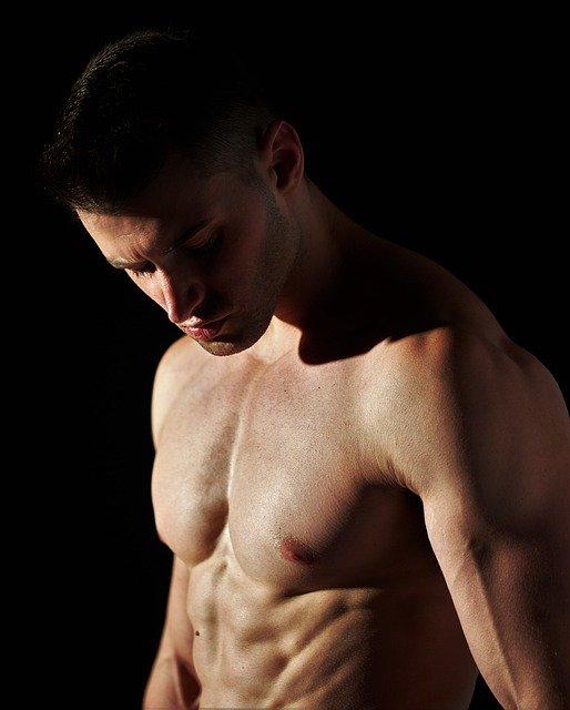 alimentation testostérone